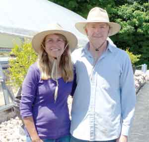 This Week On The Farm – Lavender Oasis Offers Peace, Special Events