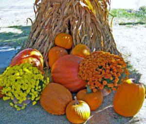 autumn-scene-public-domain-640x543