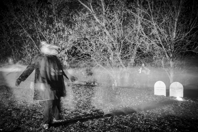 Photo Wayne Eardley, Brookside Studio - Audience members travelled along paths and trails to experience 4th Line's Shadow Walk of Millbrook.