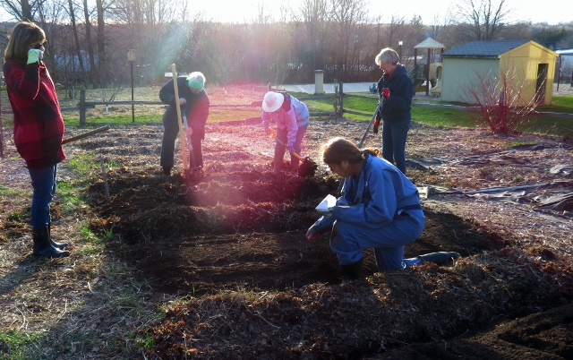 Community Gardeners at Work in 2017