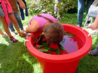 Letter to the Editor – Millbrook Zucchini Festival