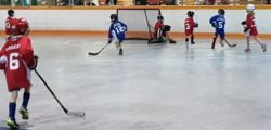 Minor Ball Hockey League Launches Second Season