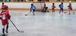 Minor Ball Hockey League Launches Second Season