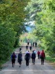 The Community Runs for St. John's Anglican Church