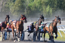 Doors Open May 11th for Another Season of Harness Racing At Kawartha Downs