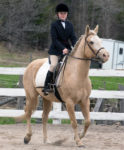 Sky Haven Equestrian Show Series